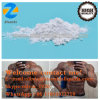 Legal Pharmaceutical Steroid Hormone Primobolan Depot / Methenolone Enanthate