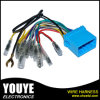 Wholesales Custom Automobile ISO Plug Audio Wiring Harness