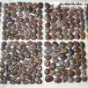 Natural Stone Pebble Stone, Pebble for Tank, Garden, Fishing Tank