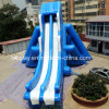 Giant Outdoor Inflatable Water Slide Match with Frame Pool
