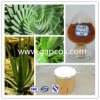Aloe Barbadensis Mill for Cosmetic Material