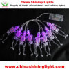 Halloween Decor GOST Battery Operated LED Fairy Lights