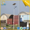 China Energy Saving Lamp 8m Pole 60W Solar Street Light