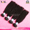 Fast Delivery Double Drawn Weft Full Cuticle Layered Kinky Curl Remy Russian Human Hair