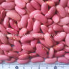 Chinese Red Kidney Bean Yunnan Origin