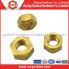 M24 Brass Hex Nuts, Hex Brass Nut