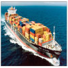 International Shipping & Storage From Guangzhou to USA