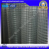 Low Price Electro Galvanized Welded Wire Mesh with (CE and SGS)