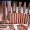 Pure Copper Rod (C10200 C1100 C11000 C1020)