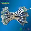 Hl-12mm/9mm LED Signboard String Light
