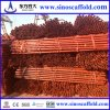 Best Price Cuplock Scaffolding for Building Construction, Made in Tianjin /China