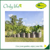 Onlylife Planting Grow Bags Made of Growth Friendly Felt