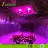 600W-1800W Full Spectrum COB LED Grow Light for Bloom Greenhouse Plants Vegetable