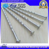 High Quality Polished Common Wire Nails Fastener Hardware