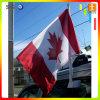 Economy Car /Flying Car Window Flag (TJ-03)