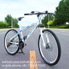 China Wholesale Cheap Adult Mountain Bicycle
