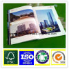 50g Lwc Paper for Offset Printing