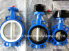 Cast Iron CF8m Disc EPDM Seat Butterfly Valve with Gear