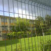 High Quality Metal Fencing for University, School (MY-42)