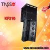 Active Line Array Speaker System Professional Audio
