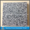 G641 Georgia Grey Granite Tiles for Exterior Flooring and Paving