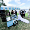 Weeding Ice Cream Blue Cart