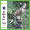 Exquisite Resin Falcon Statue (NF86169)