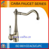 Fashion Color Finish Brass Faucet (CB-21225A)