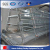 Jaulas Aves / Gallinas Battery Hen Cages (BDT025-JF-25)