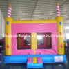 Birthday Inflatable Bouncer for Party (CYBC-554)