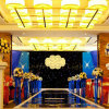 2m*3m LED Star Cloth Curtain Stage Wedding Decoration