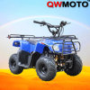 110CC ATV/ 110CC Quad Bike/ CE Quad for Kids