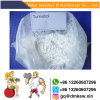 Oral Anabolic Turinabol Cutting Cycle Steroids Testosterone Steroid T-Bol