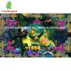 USA Fish Hunter Arcade Game Machine Kirin Slayer Fishing Game Table