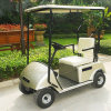 Electric 1 Seater Mini Golf Buggy for Sale