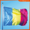 Custom Waterproof and Sunproof National Flag Romania National Flag Model No.: NF-059