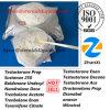 Steroid Powder Testosterone Prop Test Propionate Testosterone Propionate
