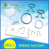 Custom Special Shape Stainless Wire Forming Spring with Factory Price