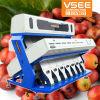 Excellent Quality High Output, 5000+ Pixels Coffee Bean Big Sorter Machine