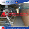 Low Price Hot Sale Poultry Farm Chicken Layer Cages for Poultry Farms