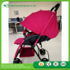 2017 En1888 Certificated Baby Stroller Without Reversable Handler to Europea Market