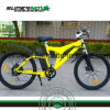 Electric Bicycle with Lithium Battery (SPM-004)