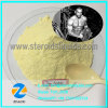 Dark Yellow Steroid Powder Trenbolone Acetate CAS No: 10161-34-9 for Muscle Gain
