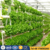2017 High Quality Commercial Hydroponic Systems for Agriculture