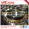 Split Roller Bearing 02b240m (240*431.8*170) Replace Cooper
