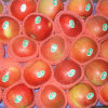 Supply High Quality Sweet Red Gala Apple