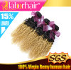 Brazilian Fumi Curl Ombre Hair Extensions