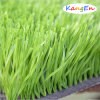 W Shape Synthetic Grass for Standard Soccer Cour