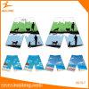 Healong Wholesale Customized Sublimation Colorful Beach Shorts