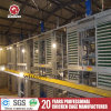 Automatic Poultry Farm Equipment H Type Layer/Broiler Chicken Layer Cage